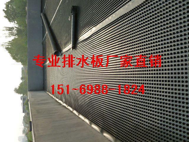 中山地下室底板排水板(2公分)阳江排水板