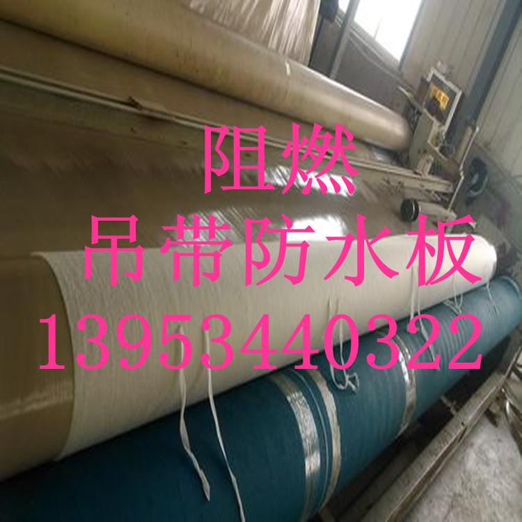 浙江临海隧道1.0mm阻燃防水板厂家