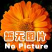 常州红梅功能母料介绍